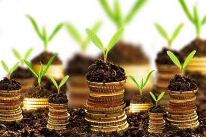 Выдержат ли налогоплательщики? О некоторых проблемах налогообложения в агросекторе.